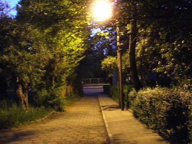Night alley