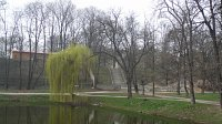 central park of świdnica